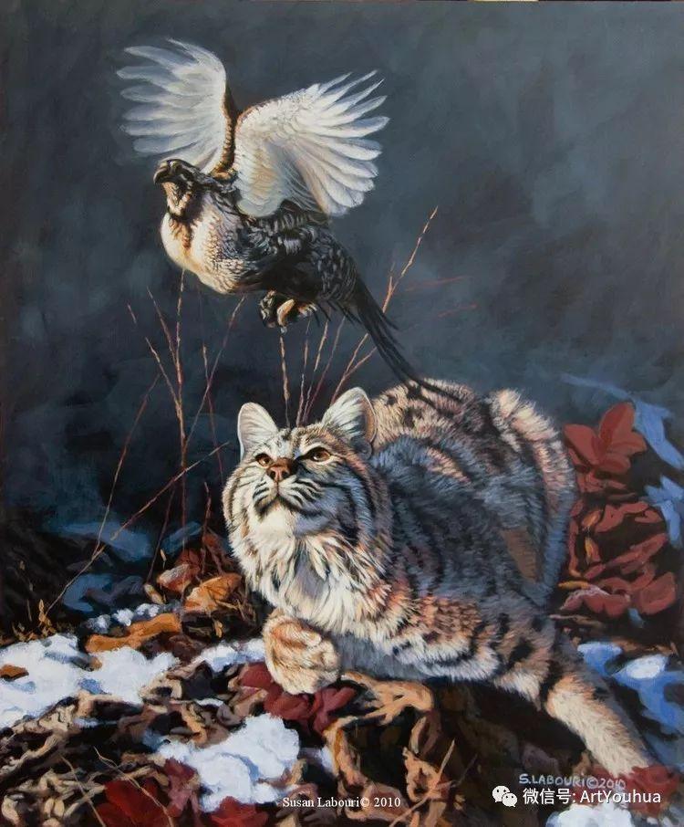 动物 美国Susan Labouri作品欣赏插图15