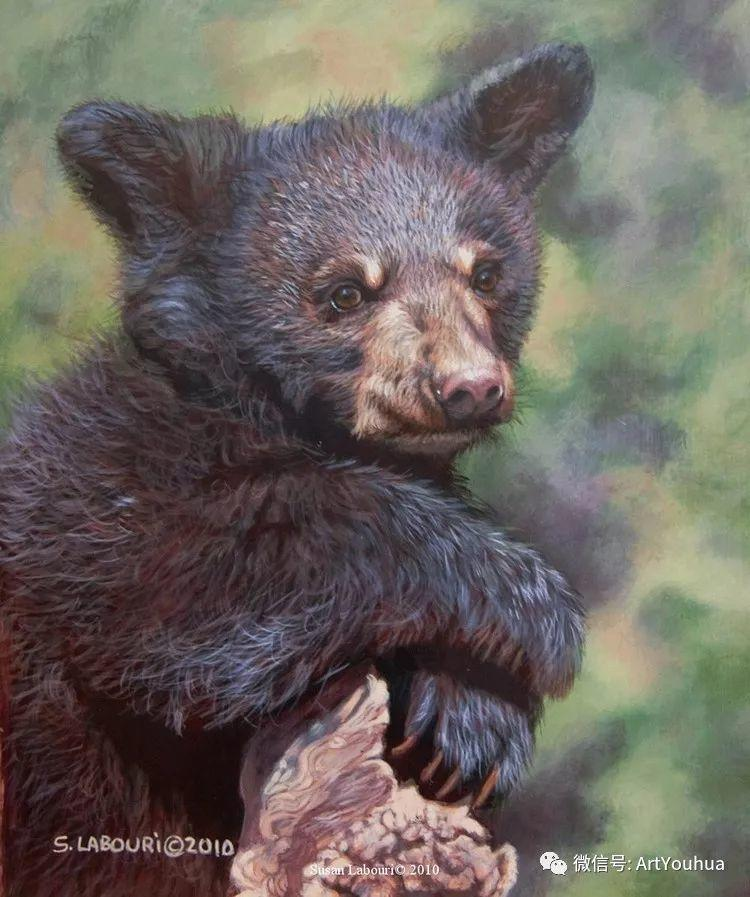 动物 美国Susan Labouri作品欣赏插图17