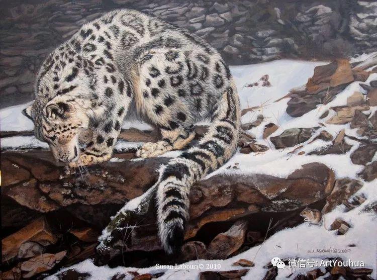 动物 美国Susan Labouri作品欣赏插图23