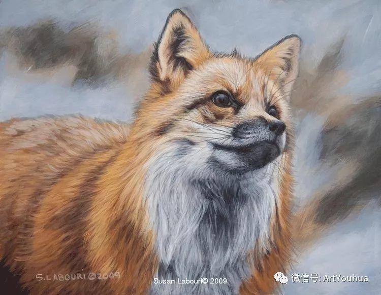 动物 美国Susan Labouri作品欣赏插图25