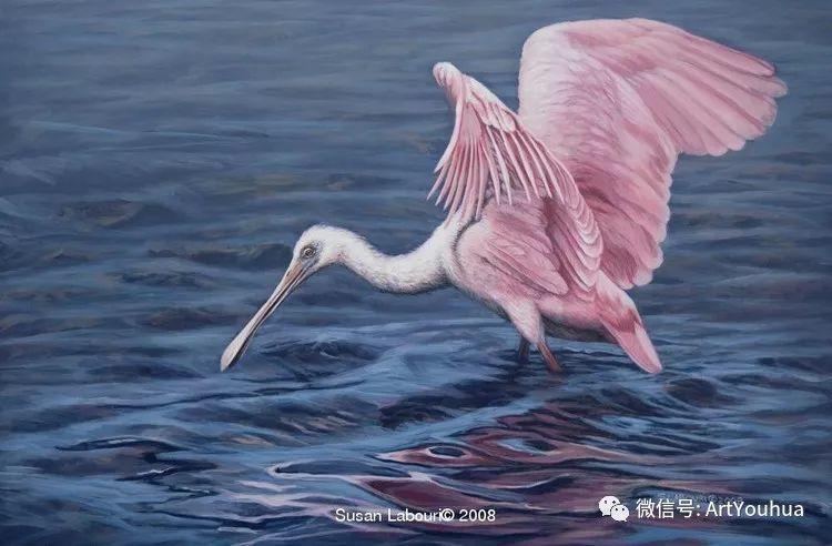 动物 美国Susan Labouri作品欣赏插图29