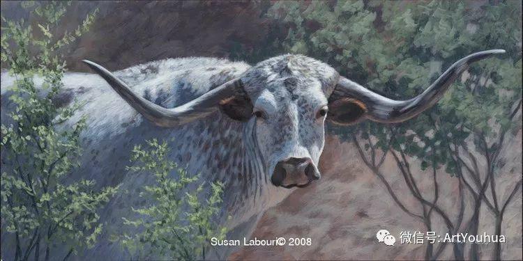 动物 美国Susan Labouri作品欣赏插图33