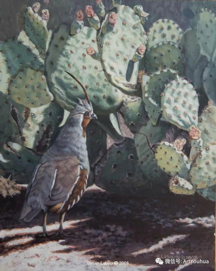 动物 美国Susan Labouri作品欣赏插图35