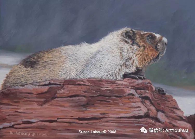 动物 美国Susan Labouri作品欣赏插图39