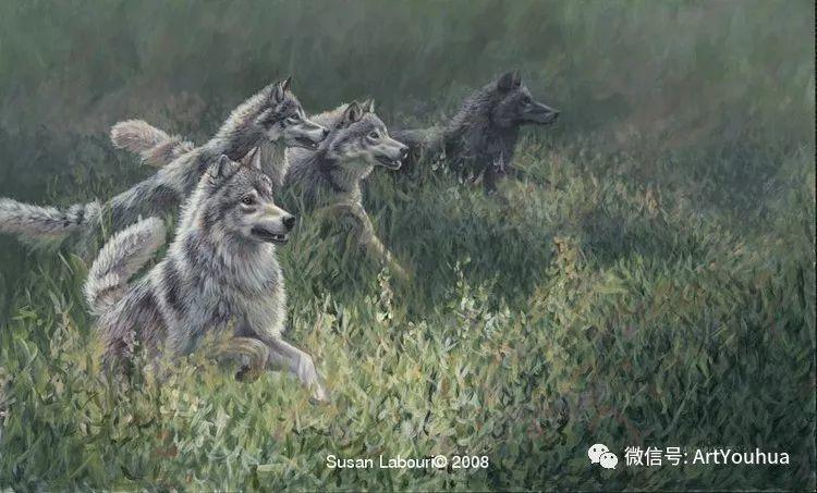 动物 美国Susan Labouri作品欣赏插图47