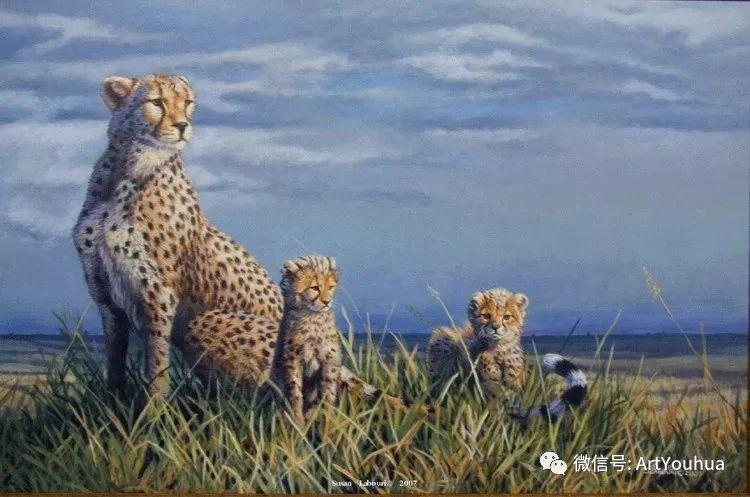 动物 美国Susan Labouri作品欣赏插图51