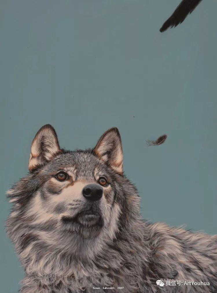 动物 美国Susan Labouri作品欣赏插图53