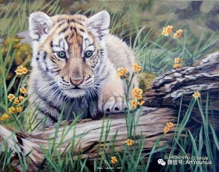 动物 美国Susan Labouri作品欣赏插图59