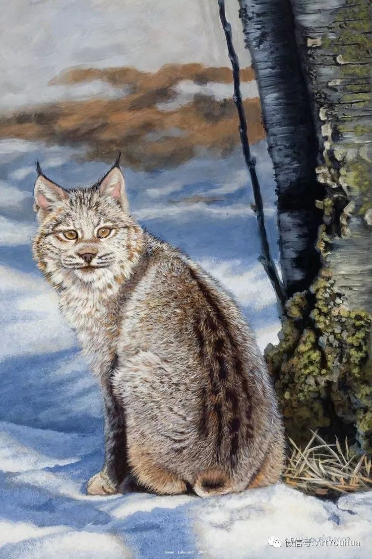 动物 美国Susan Labouri作品欣赏插图61