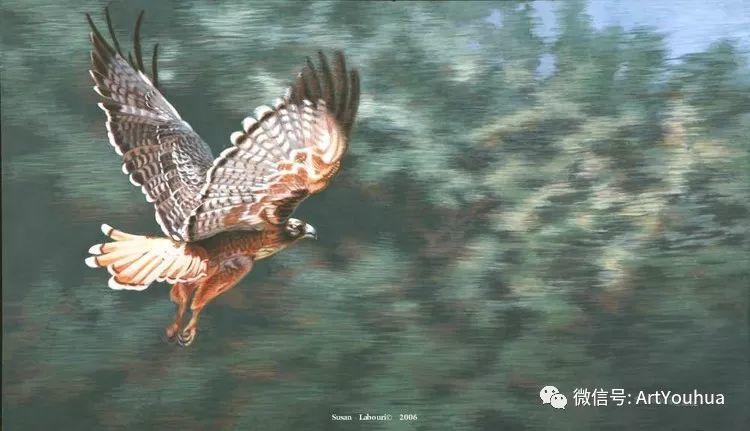 动物 美国Susan Labouri作品欣赏插图63