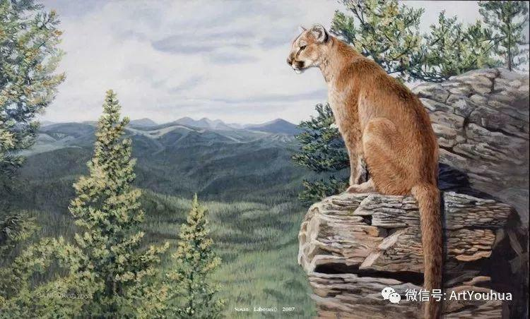 动物 美国Susan Labouri作品欣赏插图65