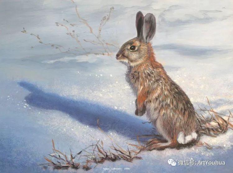 动物 美国Susan Labouri作品欣赏插图67