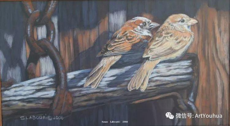 动物 美国Susan Labouri作品欣赏插图71