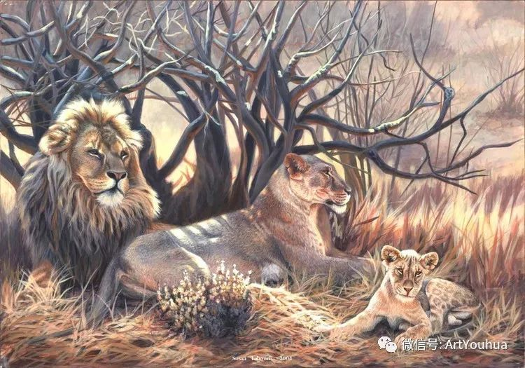 动物 美国Susan Labouri作品欣赏插图77