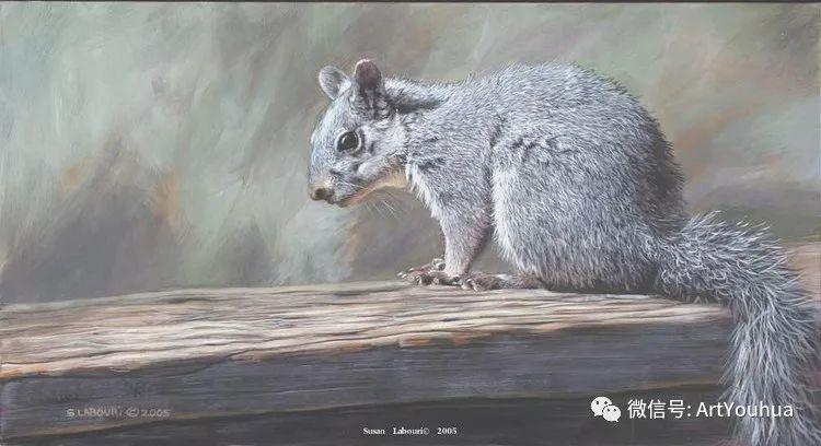 动物 美国Susan Labouri作品欣赏插图79