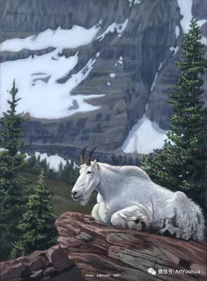 动物 美国Susan Labouri作品欣赏插图81