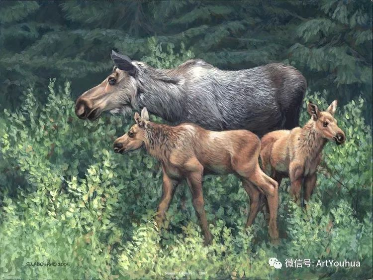 动物 美国Susan Labouri作品欣赏插图83