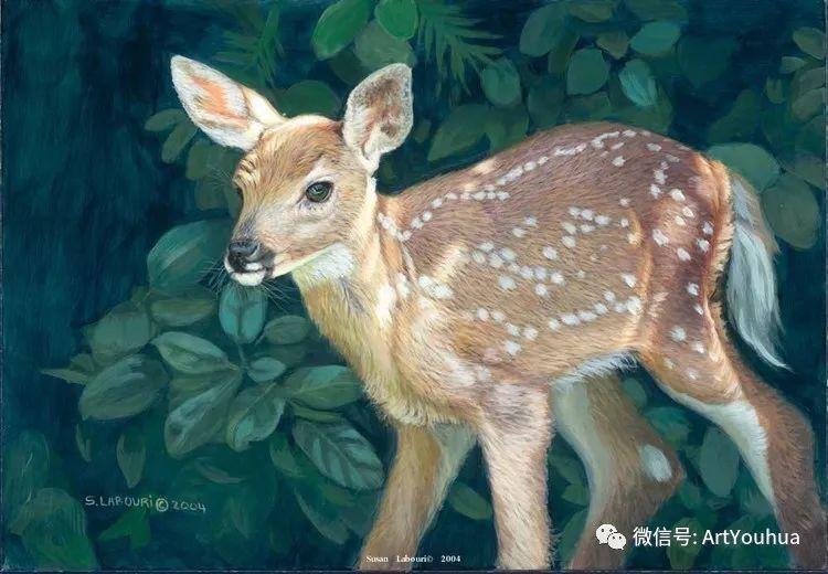 动物 美国Susan Labouri作品欣赏插图85