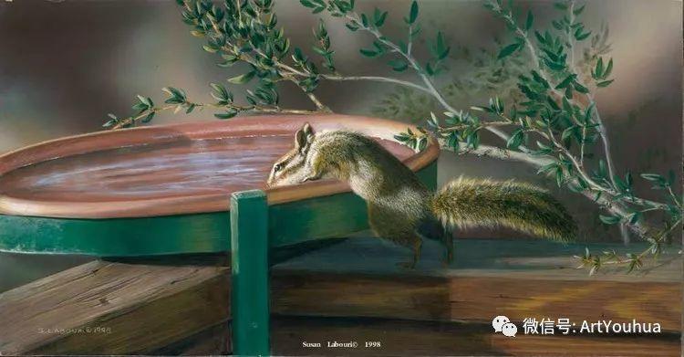 动物 美国Susan Labouri作品欣赏插图89