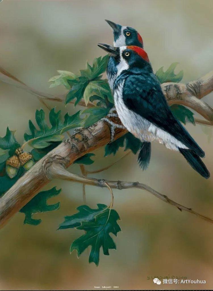 动物 美国Susan Labouri作品欣赏插图93