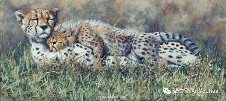 动物 美国Susan Labouri作品欣赏插图97