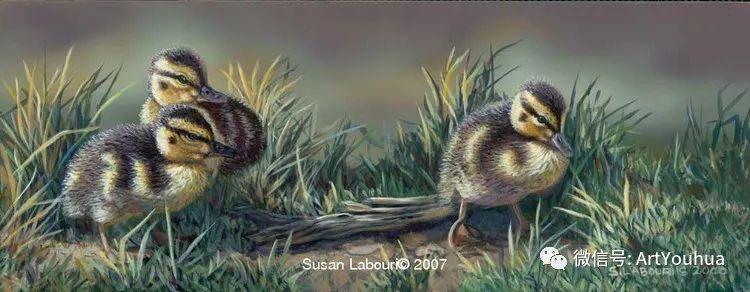 动物 美国Susan Labouri作品欣赏插图101