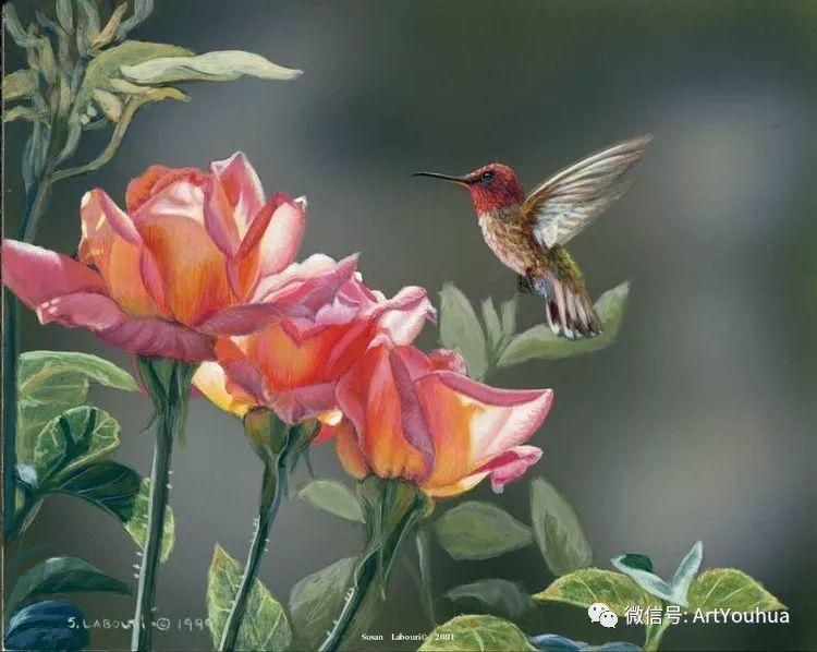 动物 美国Susan Labouri作品欣赏插图105