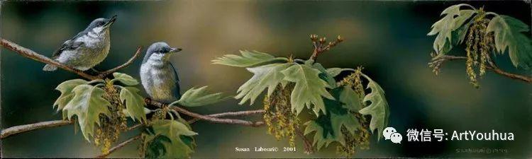 动物 美国Susan Labouri作品欣赏插图107