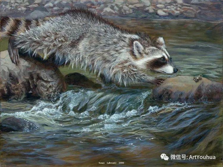 动物 美国Susan Labouri作品欣赏插图109