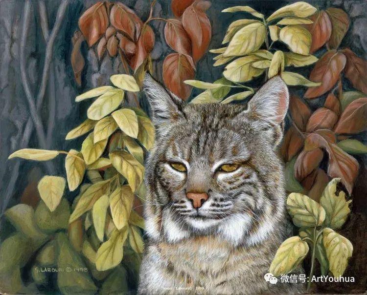 动物 美国Susan Labouri作品欣赏插图111
