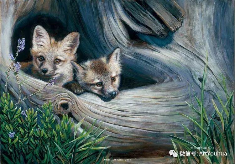 动物 美国Susan Labouri作品欣赏插图113