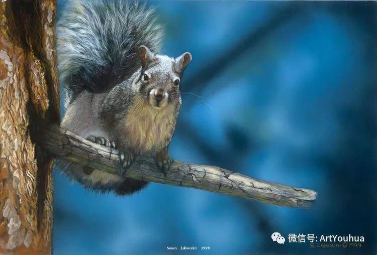 动物 美国Susan Labouri作品欣赏插图119