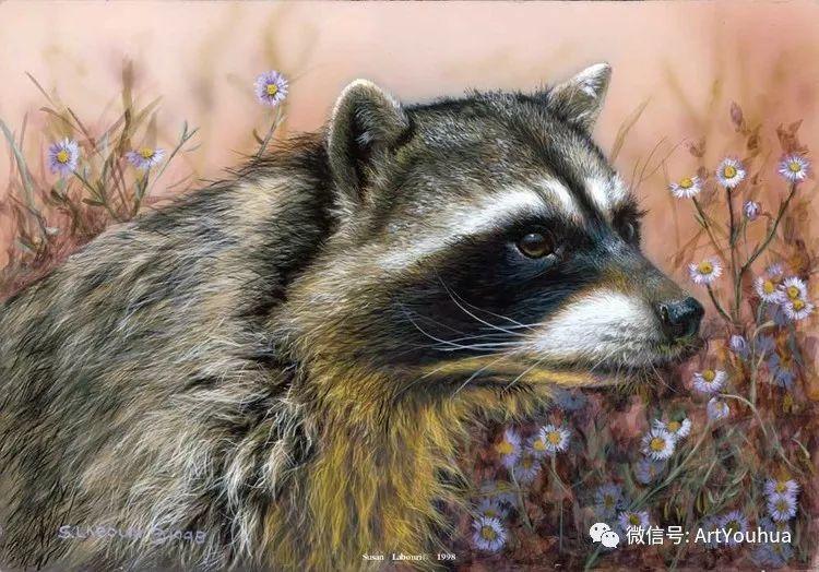 动物 美国Susan Labouri作品欣赏插图121