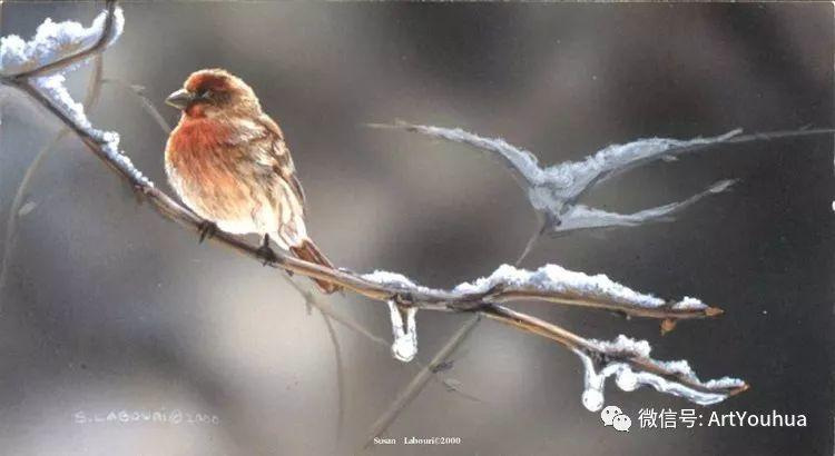 动物 美国Susan Labouri作品欣赏插图129