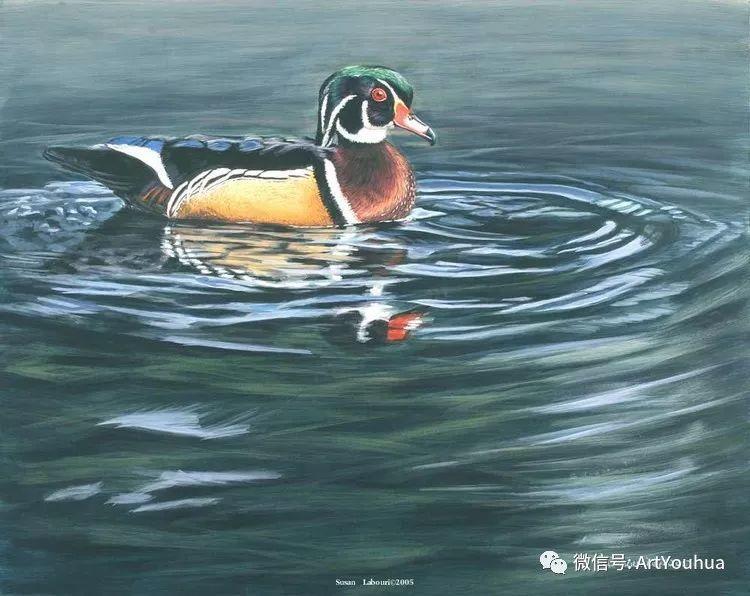 动物 美国Susan Labouri作品欣赏插图137