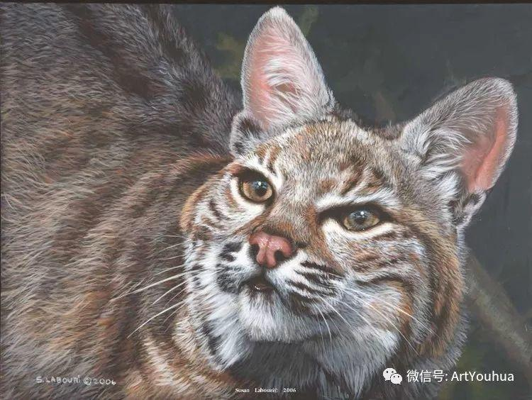 动物 美国Susan Labouri作品欣赏插图139
