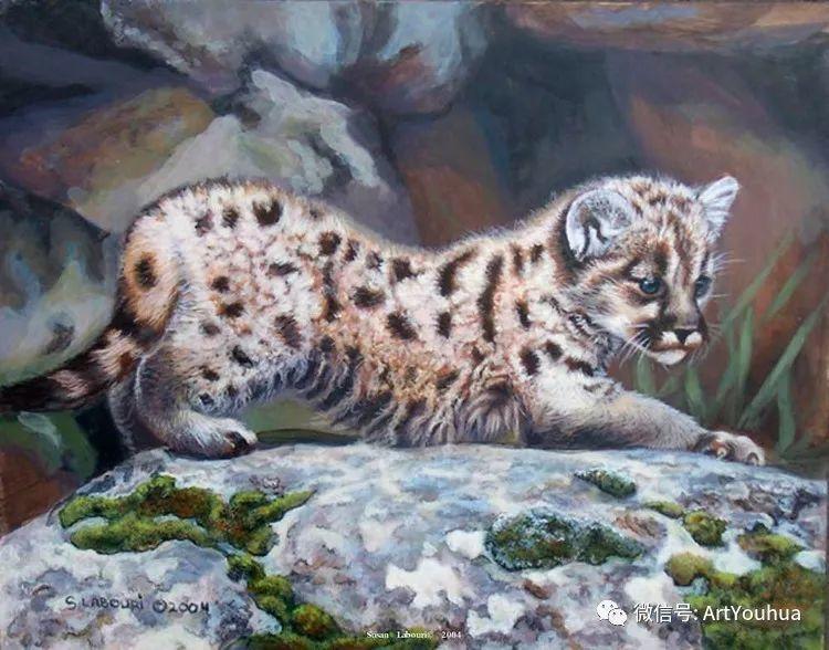 动物 美国Susan Labouri作品欣赏插图145