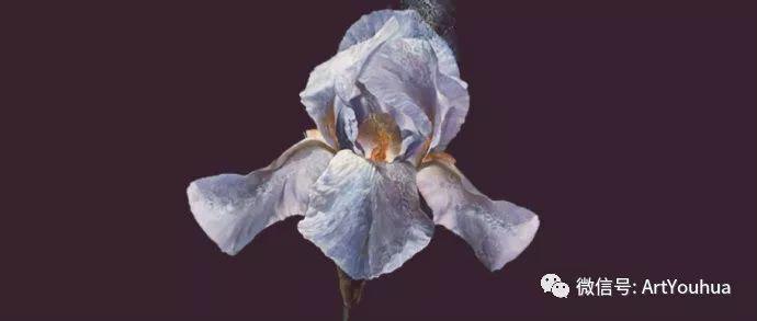 花卉 意大利抽派画家Carmelo blandino作品插图33