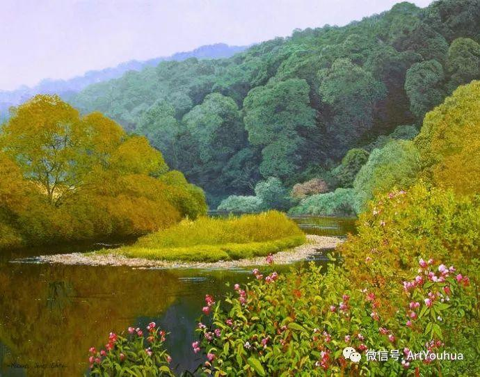 乡村风景油画 英国Michael James Smith插图15