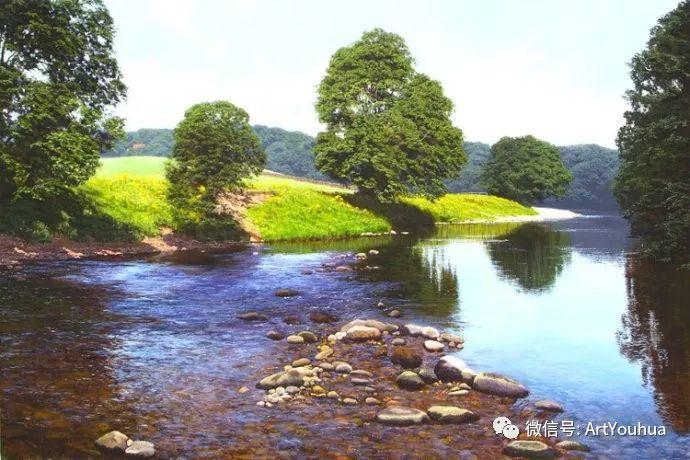 乡村风景油画 英国Michael James Smith插图27