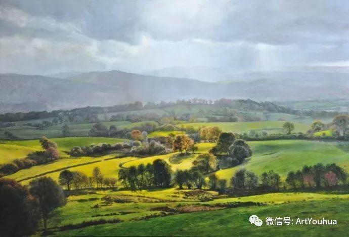 乡村风景油画 英国Michael James Smith插图35