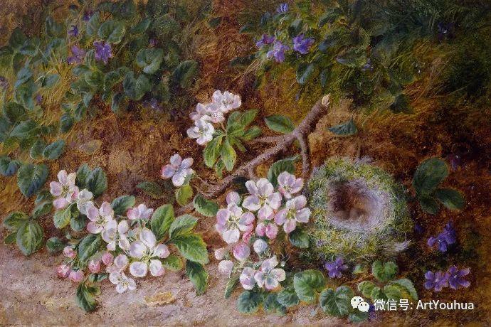 静物画 英国画家George Clare作品欣赏插图8