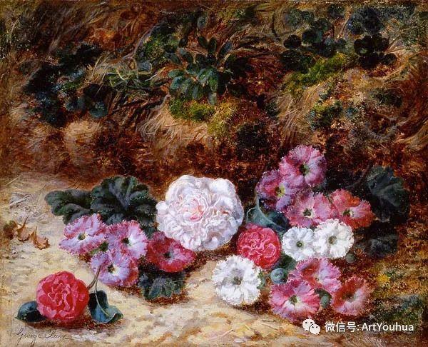 静物画 英国画家George Clare作品欣赏插图16