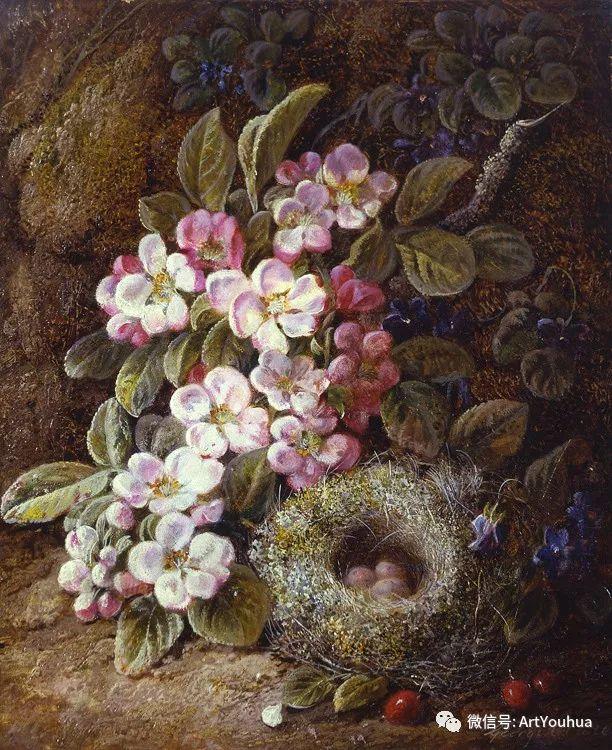 静物画 英国画家George Clare作品欣赏插图20