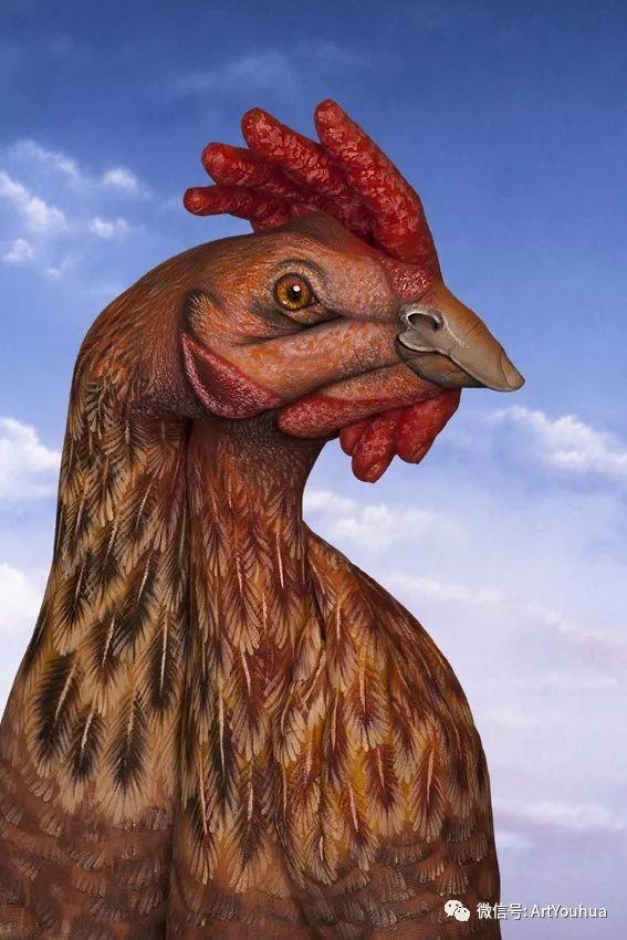 创意动物手绘  意大利Guido Daniele作品插图7