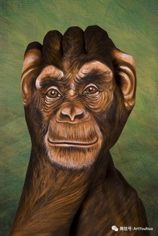 创意动物手绘  意大利Guido Daniele作品插图13