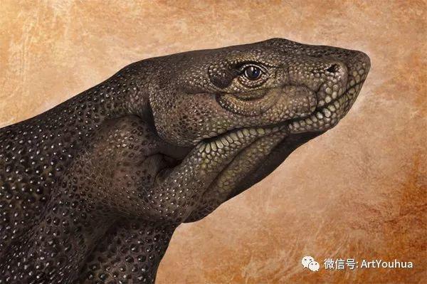 创意动物手绘  意大利Guido Daniele作品插图27