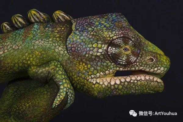 创意动物手绘  意大利Guido Daniele作品插图31