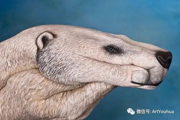 创意动物手绘  意大利Guido Daniele作品插图39