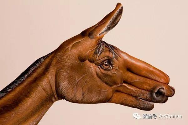 创意动物手绘  意大利Guido Daniele作品插图51